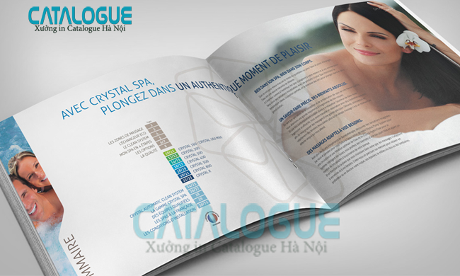 in catalogue lấy ngay