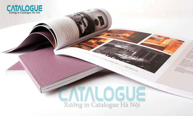in catalogue giá rẻ hiện nay