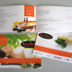thiet-ke-catalogue-spa