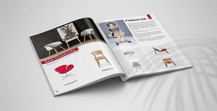 Mẫu thiết kế catalogue có màu sắc bắt mắt
