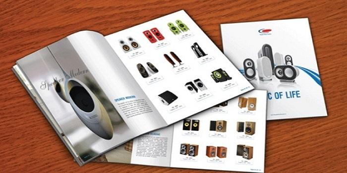 Thiết kế catalogue nền trắng vô cùng ấn tượng