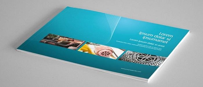 Thiết kế catalogue lấy cảm hứng từ màu sắc thương hiệu