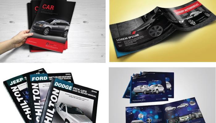 Catalogue được trình bày từ tổng quan đến chi tiết