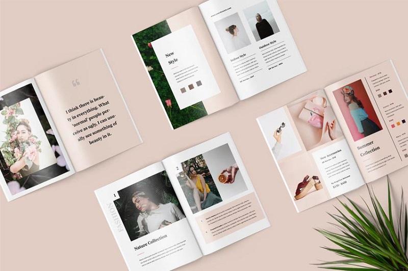 Thiết kế Catalogue bắt mắt thu hút sự chú ý của khách hàng